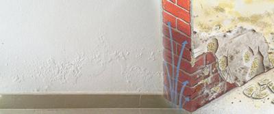 vochtbestrijding snel oplossingen voor vochtproblemen. Black Bedroom Furniture Sets. Home Design Ideas